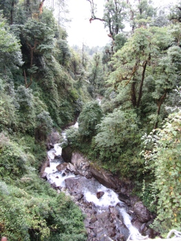 Jungle water falls