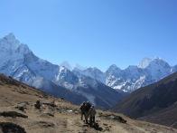 Mountain Vally