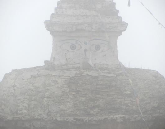 Buddha's watching