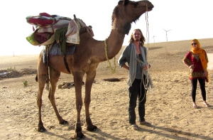 So Mr. Camel, which way is the desert?