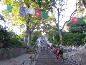 Thousands of steps leading up to the stupa. A Gauntlet guarded by monkeys waiting to steal anything from unobservant tourists.